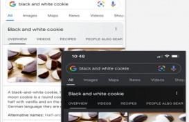 Hari Ini Mode Gelap Google Search Bisa Diakses