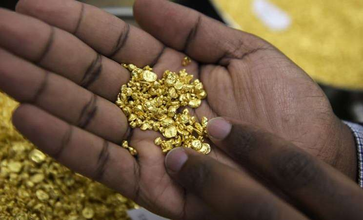Seorang karyawan memegang beberapa butiran emas di Perth Mint Refiner. -  Carla Gottgens / Bloomberg