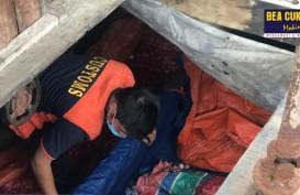Operasi Jaring Sriwijaya Bea Cukai Gagalkan Penyelundupan Impor 24,5 Ton Bawang Merah