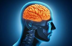 Penelitian Ungkap Keterkaitan Covid-19 dengan Otak Manusia