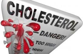 Cegah Kolesterol Tinggi, Hindari Makanan Ini
