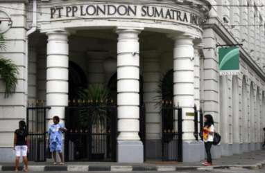 Dibayangi Pelemahan Harga CPO, Begini Prospek Saham London Sumatra (LSIP)