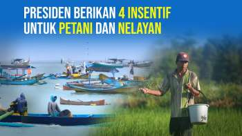 Petani dan Nelayan Dapat 4 Insentif dari Presiden Jokowi