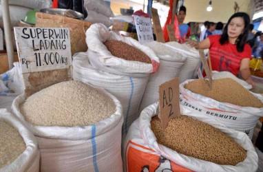 Cabai Rawit Dorong Deflasi di Manado dan Kotamobagu