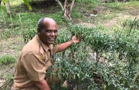 Kabupaten Pidie Siap dalam Penanggulangan Perubahan Iklim
