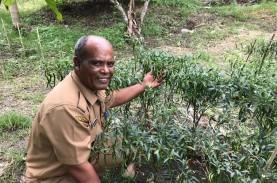 Kabupaten Pidie Siap dalam Penanggulangan Perubahan…