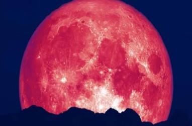 Saksikan Bulan Purnama Strawberry Jumat Pekan Ini, Siapkan Lensa Tele Anda