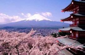 Goda Wisatawan, Sejumlah Negara dan Kawasan Siapkan Insentif