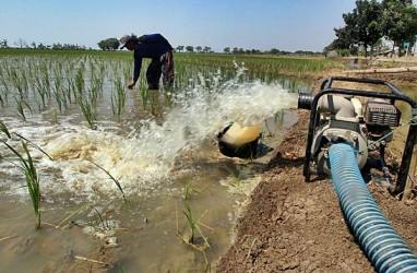 Kementerian PUPR Rehabilitasi 85 Ribu Hektare Jaringan Irigasi di Kalteng