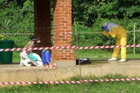 Ada Kasus Ebola Baru di Kongo, Virus Apa dan Bagaimana…