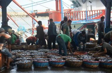 Serap Ikan Nelayan, Pemerintah Optimalkan Pasar Daring dan Ekspor
