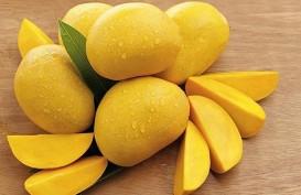 Ini Resep Makanan Sehat dari Mangga