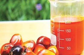 Program Biodiesel B30 Dinilai Mampu Dongkrak Harga…