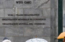 Menanti Reformasi WTO yang (Tak) Sempurna