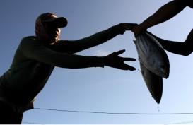 Menteri KKP Salurkan Bantuan Rp7,9 Miliar kepada Nelayan Gorontalo