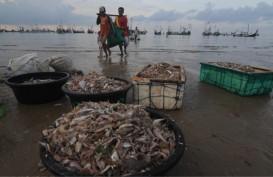 KBI dan Perinus Teken Kemitraan Sistem Resi Gudang Ikan