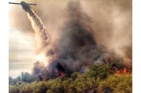 Awasi Titik Rawan Kebakaran Hutan, Kabupaten OKI Manfaatkan…