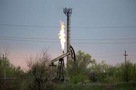 Beleid Gas 6 Dolar AS Sudah Berlaku 2 Bulan, Pabrik…