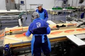 Chile Bujuk China Impor Ikan Salmon Lagi