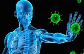 5 Cara Tingkatkan Imunitas Melalui Makanan Bergizi Saat Pendemi Corona