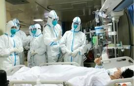 PBB, WHO, dan WWF Sebut Pandemi Corona Karena Kerusakan Alam