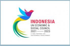 Jadi Anggota ECOSOC Bantu Indonesia Pulihkanan Ekonomi…