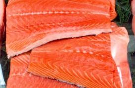 Salmon dari Norwegia Bukan Sumber Kasus Baru Covid-19 di Beijing