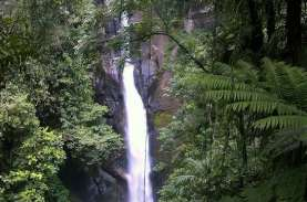 Wisata Alam di Bogor Bakal Diserbu Wisatawan Jabodetabek,…