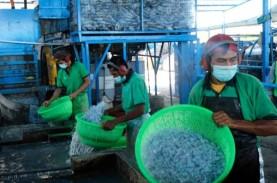 Ekonomi Sirkular Solusi Penanganan Sampah Plastik