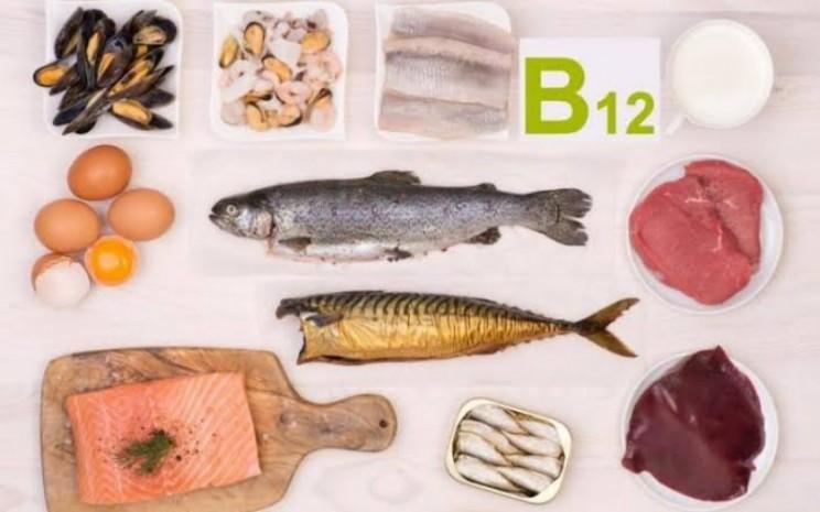 Kandungan makanan mengandung vitamin B12