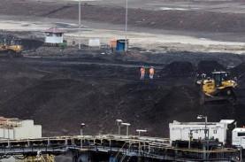 Nasib Golden Energy Mines (GEMS), Anak Grup Sinarmas di Persimpangan Jalan