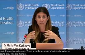 WHO: Perbanyak Produksi Dexamethasone untuk Pasien Kritis Covid-19