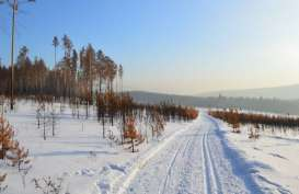 Suhu Siberia Mencapai 100 Derajat Fahrenheit, Rekor Terpanas yang Pernah Tercatat