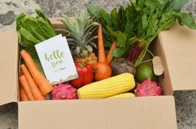 Beli Sayuran Via Online Jadi Pilihan Saat Pandemi