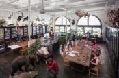 Hyundai, RISD Gali Inspirasi Alam untuk Mobilitas Masa Depan