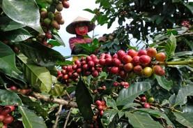 PERDAGANGAN GLOBAL : Pembiayaan Ekspor Komoditas Pertanian
