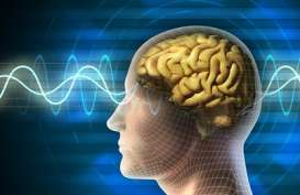 Studi Baru Ungkap Covid-19 Parah Dapat Menyebabkan Komplikasi Otak