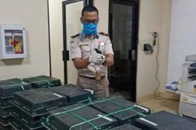Penyelundupan 400 Burung Kacer Melalui Bakauheni Digagalkan