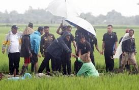 Program Peningkatan Tata Guna Air Irigasi Jangkau 10.000 Lokasi