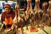 Inflasi Balikpapan Turun, Harga Bahan Makanan jadi Faktor Pendorong