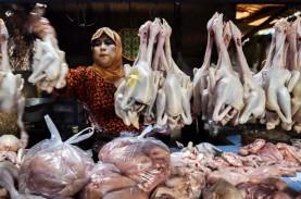 Daging Ayam Picu Inflasi di Kota Malang pada Juni…