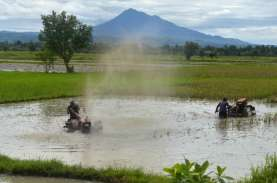 Nilai Tukar Petani & Harga Gabah Kering Panen di Lampung…