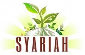 Pangsa Pasar Keuangan Syariah Per April 2020 Naik, Jadi 9,03 Persen