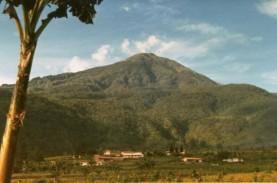 Warganet Rindu Piknik, Gunung Lawu Menggema di Dunia…