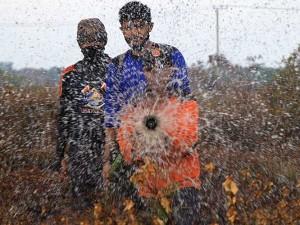 353 Hektare Lahan di Aceh Terbakar