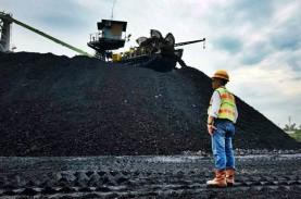 Perhapi Sepakat Produksi Batu Bara Mesti Dikendalikan