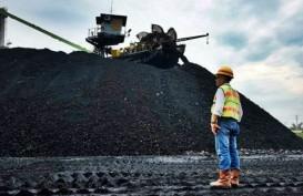 TREN PENURUNAN HARGA : Produksi Batu Bara Membeludak