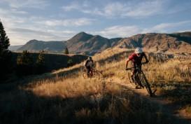 Bosch Perbarui Software Bikin Sepeda Gunung Makin Lincah