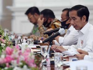 Presiden Joko Widodo Pimpin Ratas Penurunan Emisi Gas RUmah Kaca