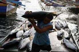 Historia Bisnis: Masuknya Kapal Ikan Besar Jalur Deregulasi…